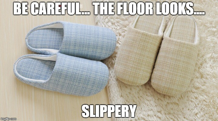 puns slippers image - 8795205632