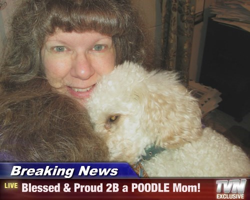 Breaking News - Blessed & Proud 2B a POODLE Mom!