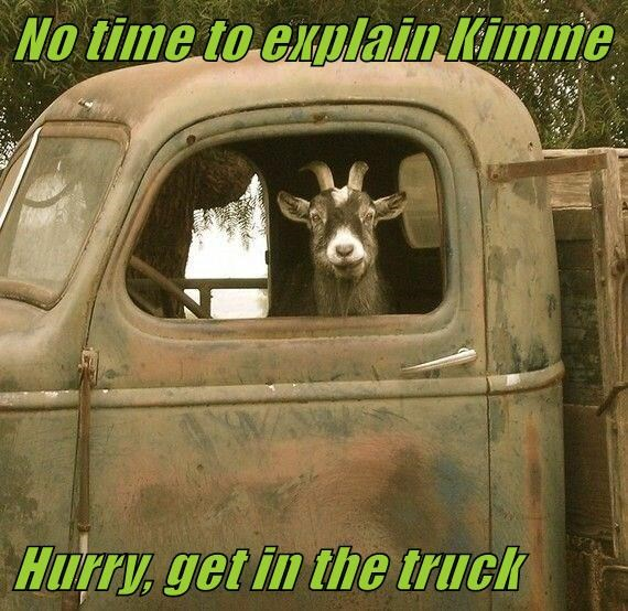 No time to explain Kimme  Hurry, get in the truck