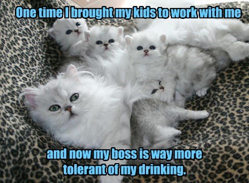 boss work caption mom Cats - 8795565056