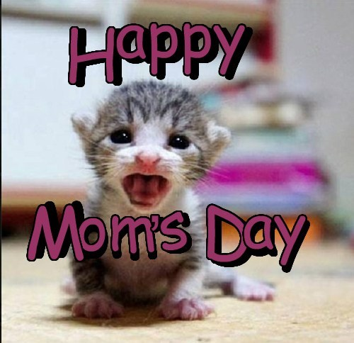 For all te mommas out der !