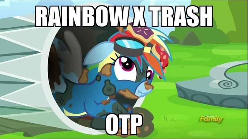 shipping rainbow dash newbie dash literal garbage - 8795729152