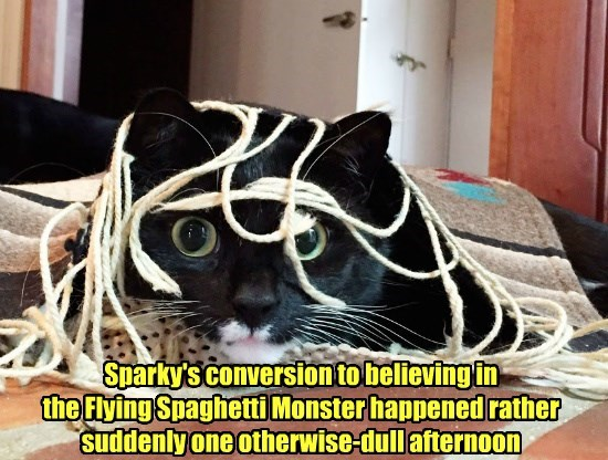 cat,flying spaghetti monster,conversion,caption