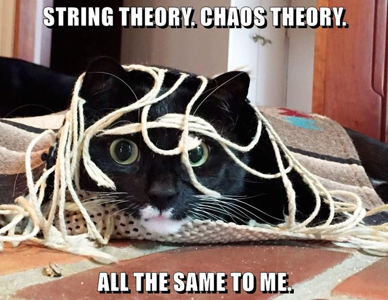 STRING THEORY. CHAOS THEORY.  ALL THE SAME TO ME.