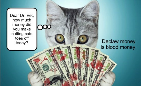 declawing is blood money