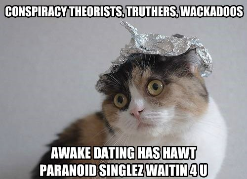 conspiracy tin foil caption Cats dating - 8796548096