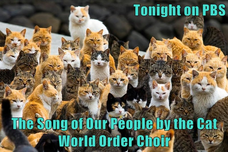 Tonight on PBS The Song of Our People by the Cat World Order Choir