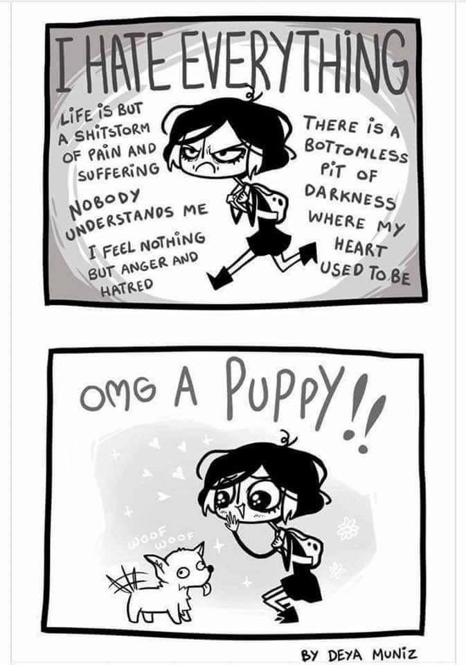 web-comics-angry-sad-until-puppy-appears