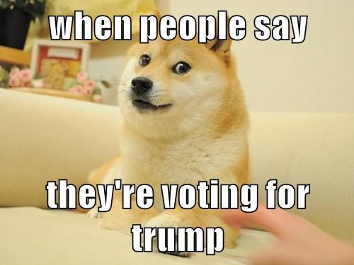 dogs,people,trump,caption,voting