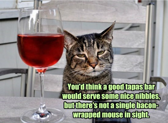 bar cat tapas caption mouse bacon