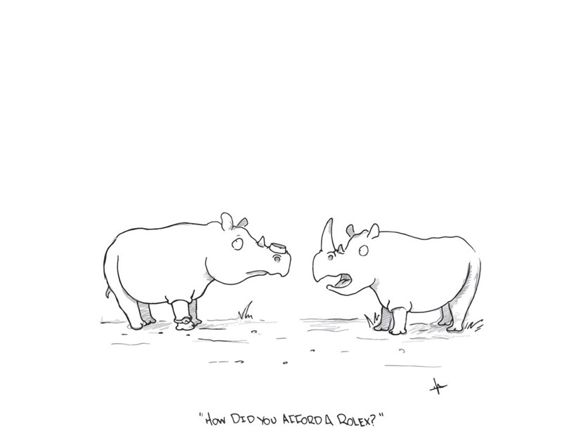 rhino-horn-missing-rolex-question-web-comics-awkward