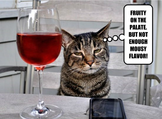 wine caption Cats - 8797045760