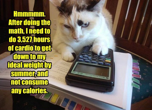 weight calories caption Cats - 8797292288