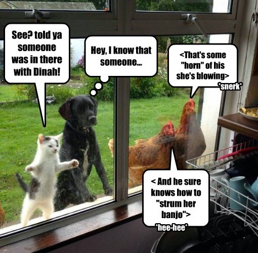 cat dogs strumming dinah banjo kitchen caption - 8797300736