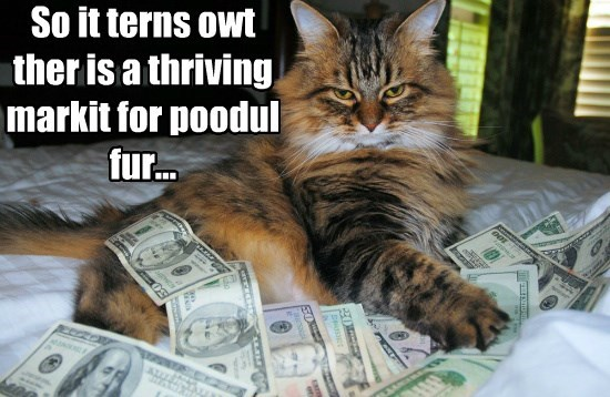 So it terns owt ther is a thriving markit for poodul fur...