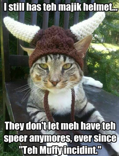 helmet knitting caption Cats - 8797421312
