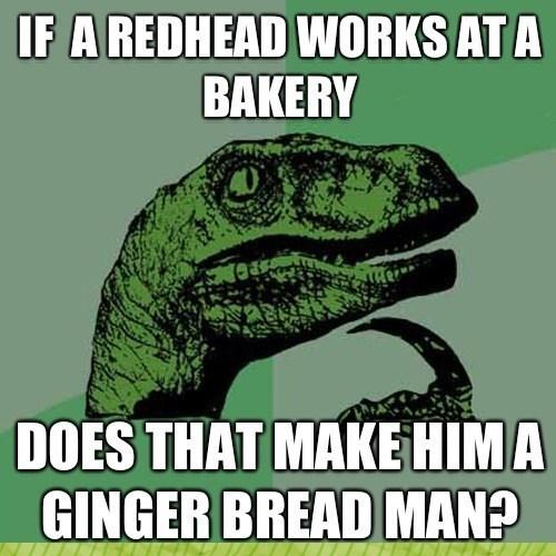 pun Memes Raptor - 8797432576