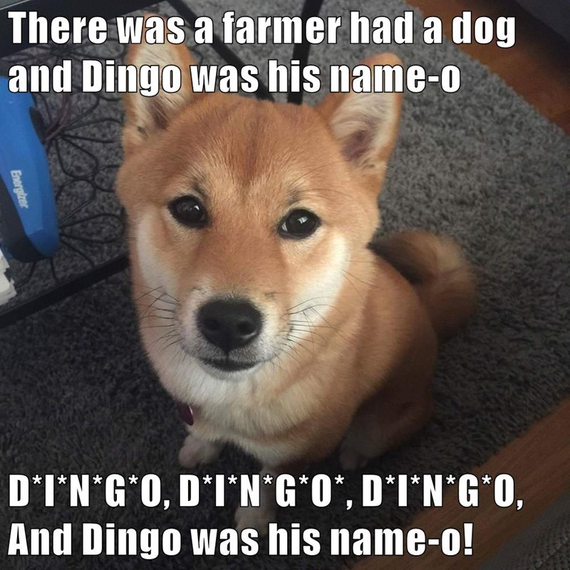 There was a farmer had a dog and Dingo was his name-o D*I*N*G*O, D*I*N*G*O*, D*I*N*G*O, And Dingo was his name-o!