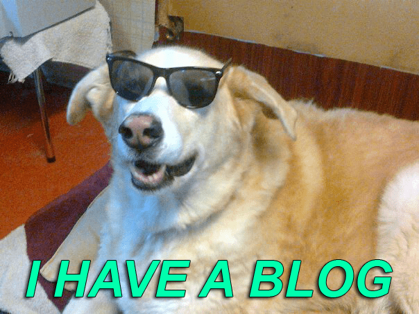 image dogs blog So Does Everyone Else, Dog