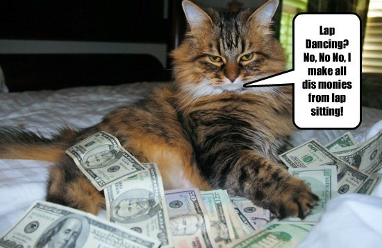 lap dancing caption Cats money - 8797785344