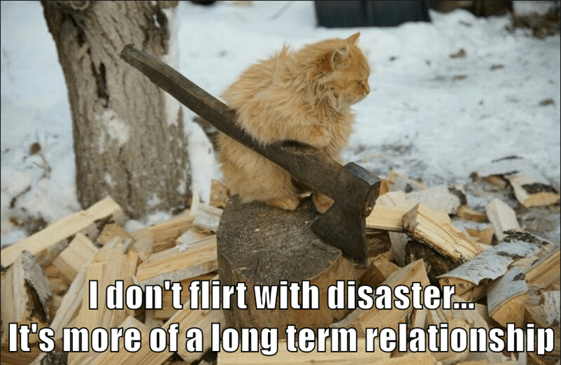 I don't flirt with disaster... It's more of a long term relationship