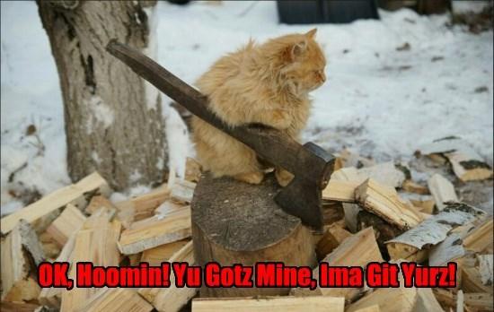 OK, Hoomin! Yu Gotz Mine, Ima Git Yurz!