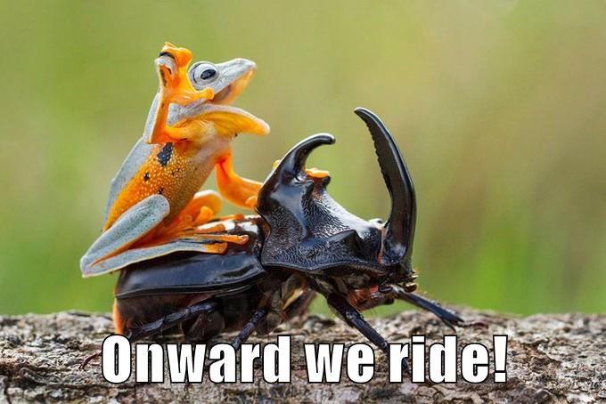 Onward we ride!