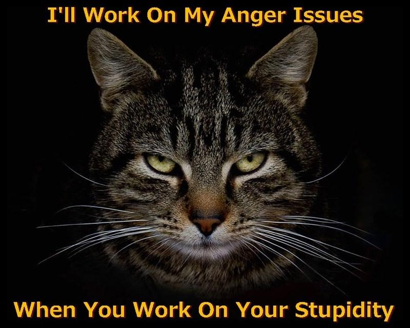 I'm Past The Grumpy Point-
