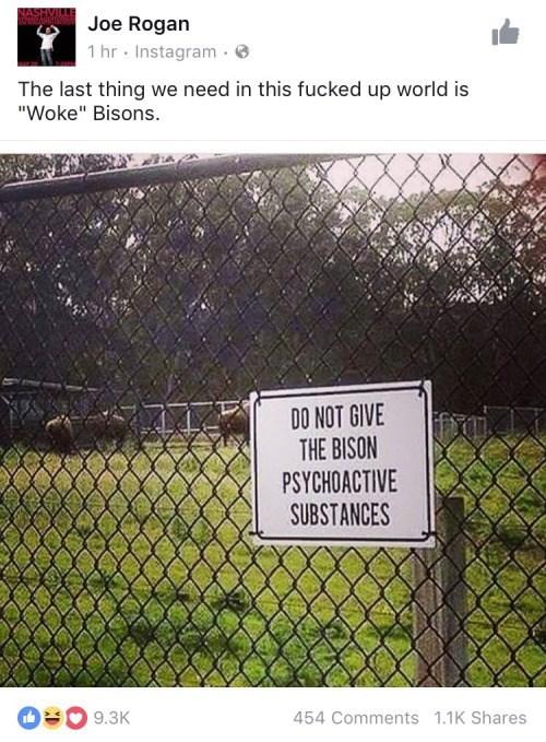 drugs instagram bison failbook facebook - 8798673408