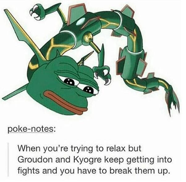 pepe-rayquaza-hybrid-funny-pokemon-moment