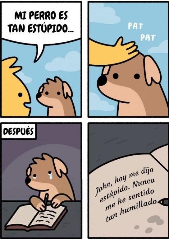 perro estupido