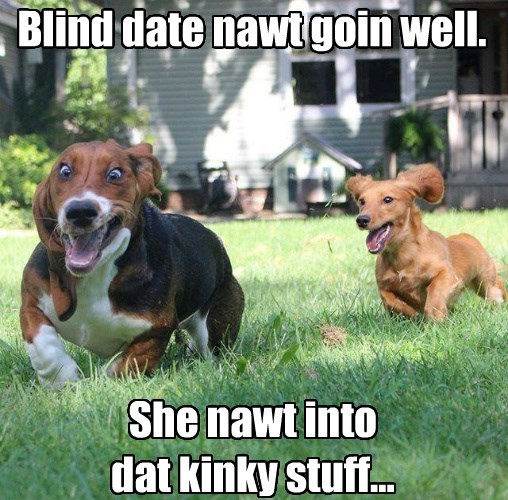 dogs date kinky caption - 8798916864