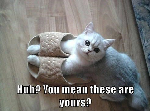 Huh? You mean these are yours?
