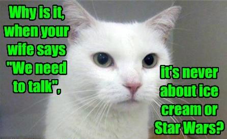 cat star wars talk never wife ice cream caption - 8799030784