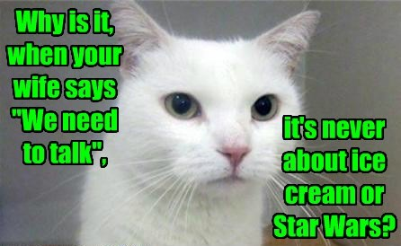 cat star wars talk never wife ice cream caption - 8799030784