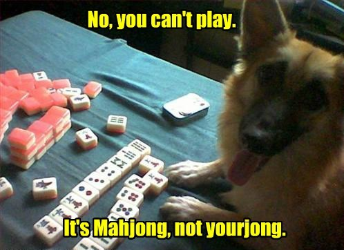 dogs,mahjong,play,yourjong,caption