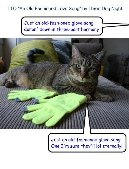 An Old Fashioned Glove Song Tto An Old Fashioned Love Song By Three Dog Night Lolcats Lol Cat Memes Funny Cats Funny Cat Pictures With Words On
