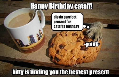 Happy Birthday, cataff