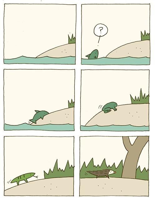 evolucion es