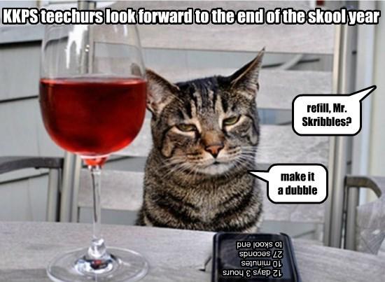 double school year cat end teachers caption - 8799307264