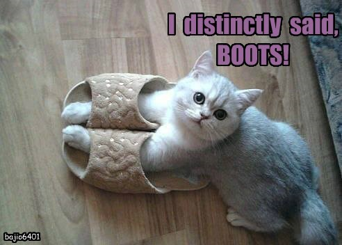 I  distinctly  said,   BOOTS!