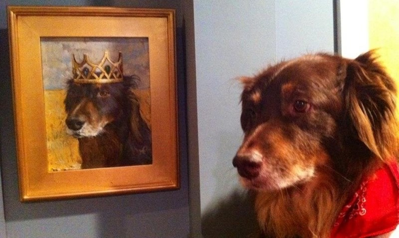 a fitting tribute to a royal pup