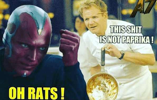 Chef Gordon Ramsay Ain't Having None of Your Slacking off Vision!
