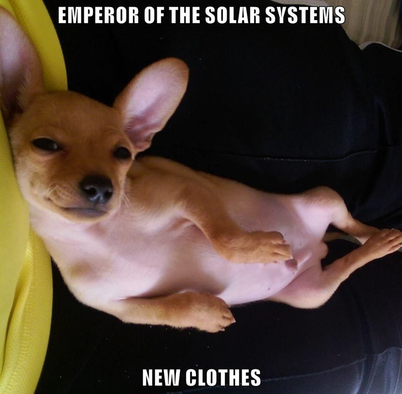 animals dogs new emperor solar system clothes caption - 8799402752