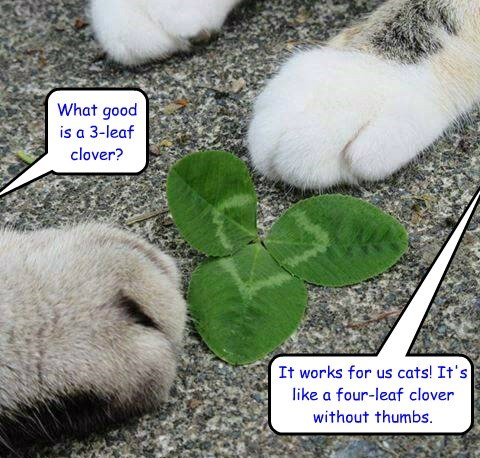 What good is a 3-leaf clover?