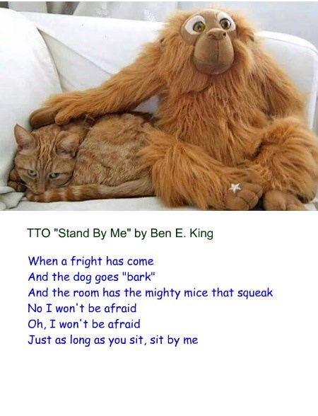 """""""Sit By Me"""" (TTO """"Stand By Me"""" by Ben E. King)"""