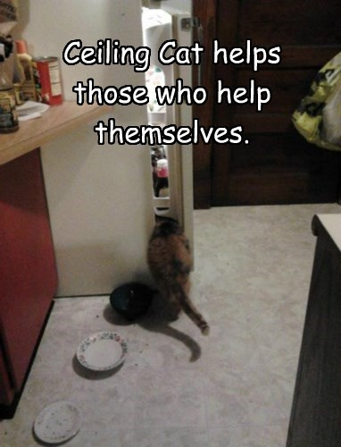 Ceiling Cat helps those who help themselves.