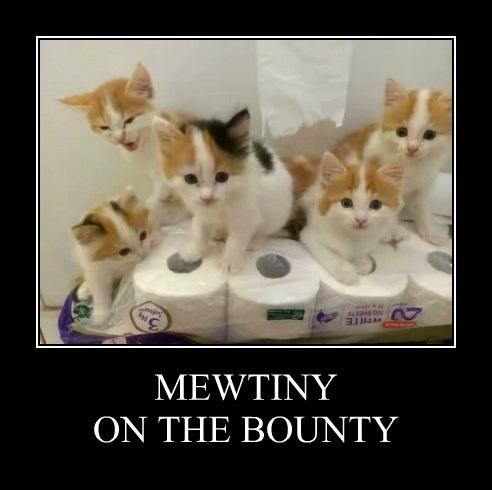 MEWTINY ON THE BOUNTY