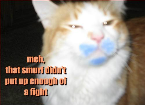 cat smurf meh fight didnt caption enough - 8799788800