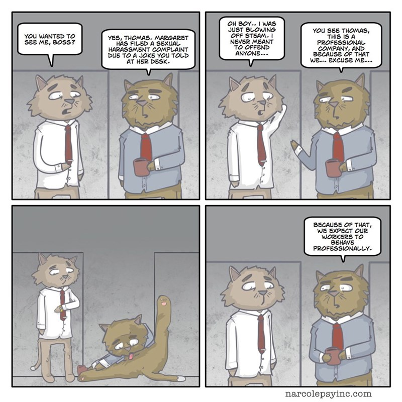 funny-exchange-between-office-cats-web-comics